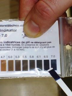 Test bandelette pH eau neutre